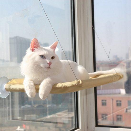 Котешко легло за прозорец