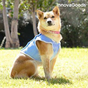 Малка охлаждаща жилетка за кучета InnovaGoods - S размер