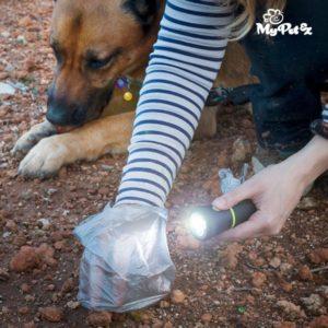 Фенерче с контейнер за торбички за кучета My Pet EZ
